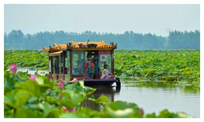 Tuanhu Lake Lotus Flower Park