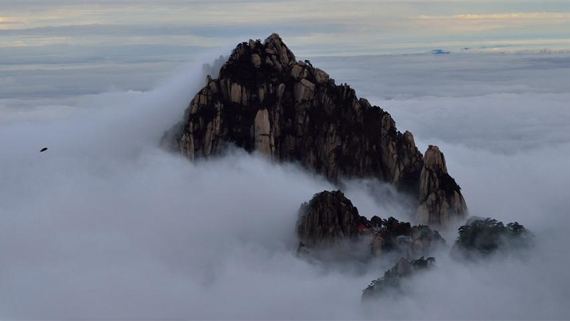 Cloud Sea in the Yellow Mountain