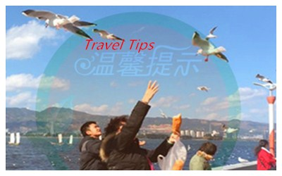 Kunming Travel Tips