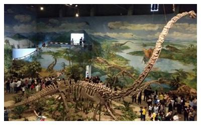 Dinosaur Museum1.jpg