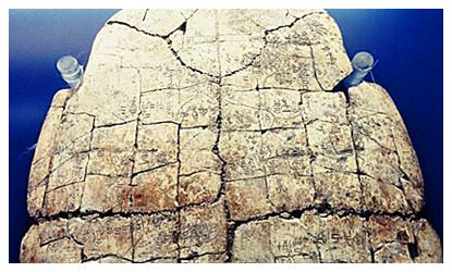 Yin Xu Relics