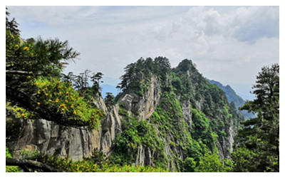 Baotianman Scenic Area