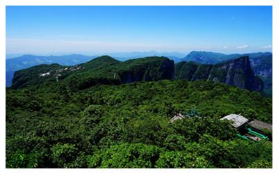 Tianmen Mountain Bonsai Garden